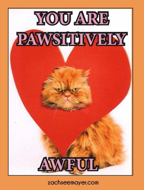pawsitivly